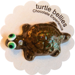 Turtle Bellies LLC